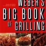Webr big biik of grilling review