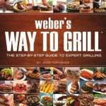 Weber way to grill review